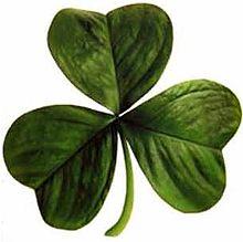 220px-Irish_clover