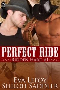 Perfect-Ride300x450[1]