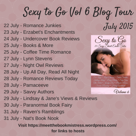 Sexy to Go Tour  Vol 6 Blog Tour-1