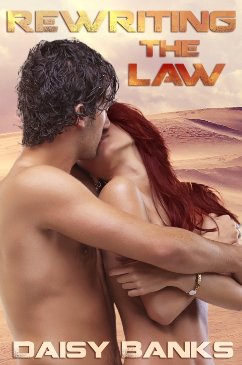 Banks_RewritingTheLaw_Cover-4