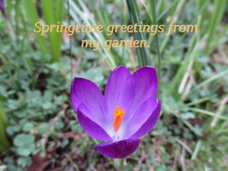 Springtimegreetings